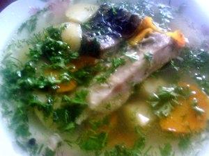 Рыбная юшка с помидорами