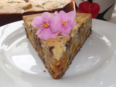 Пирог с мандаринами и шоколадом
