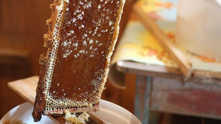 Как правильно выбирать мед?