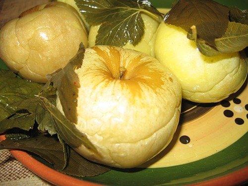 Готовим вкусные моченые яблоки