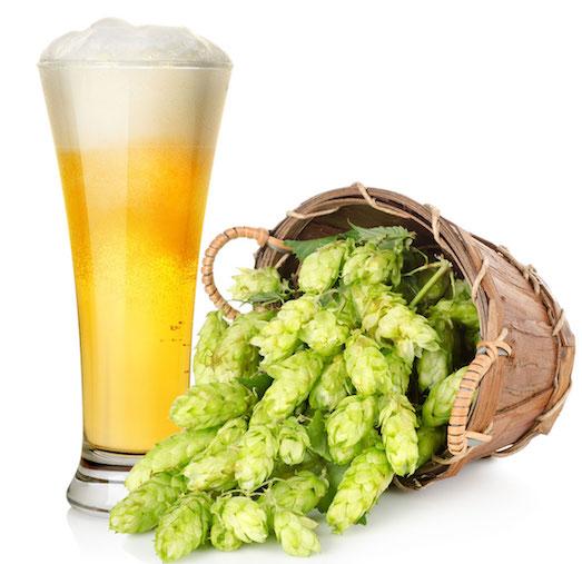 Секреты приготовления домашнего пива