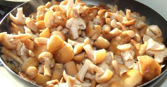 Жареные опята с луком — самые вкусные рецепты блюда с грибами