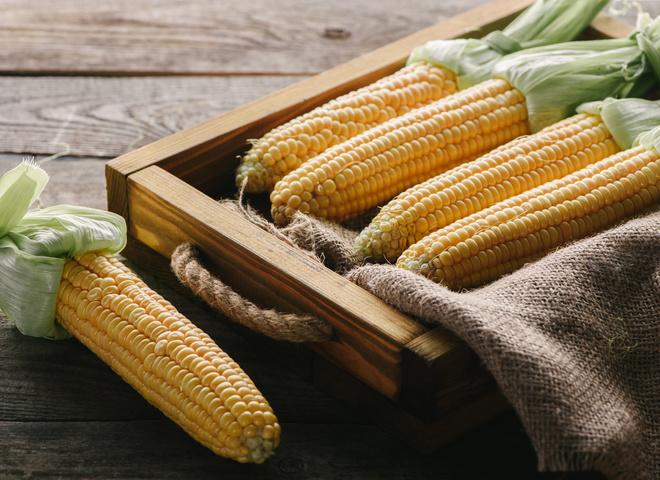 Как сварить кукурузу правильно